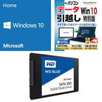 Windows 10 Home 64bit DSP版 DVD-ROM 引越ソフト付 + Western Digital 500GB SSDセット