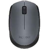 M171 Wireless Mouse (M171GR)